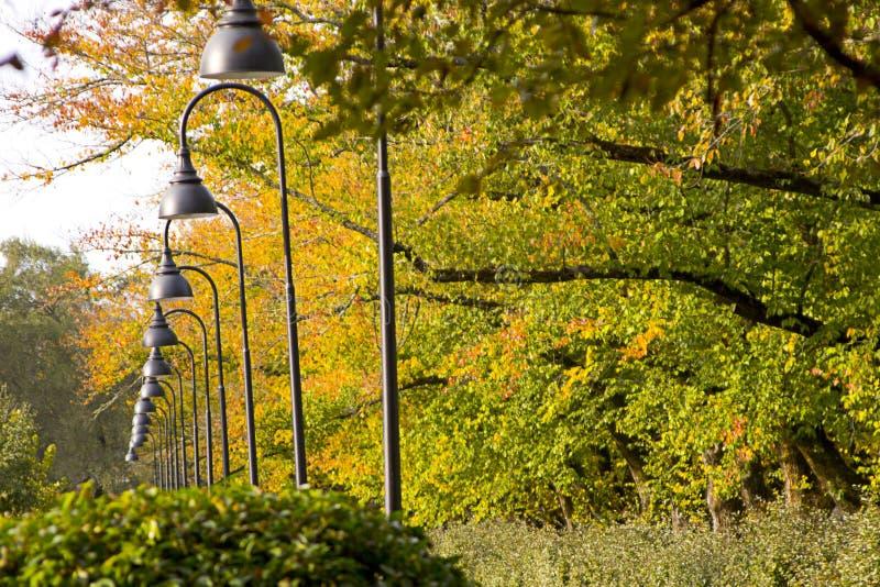 Lights Rows Στοκ φωτογραφίες με δικαίωμα ελεύθερης χρήσης