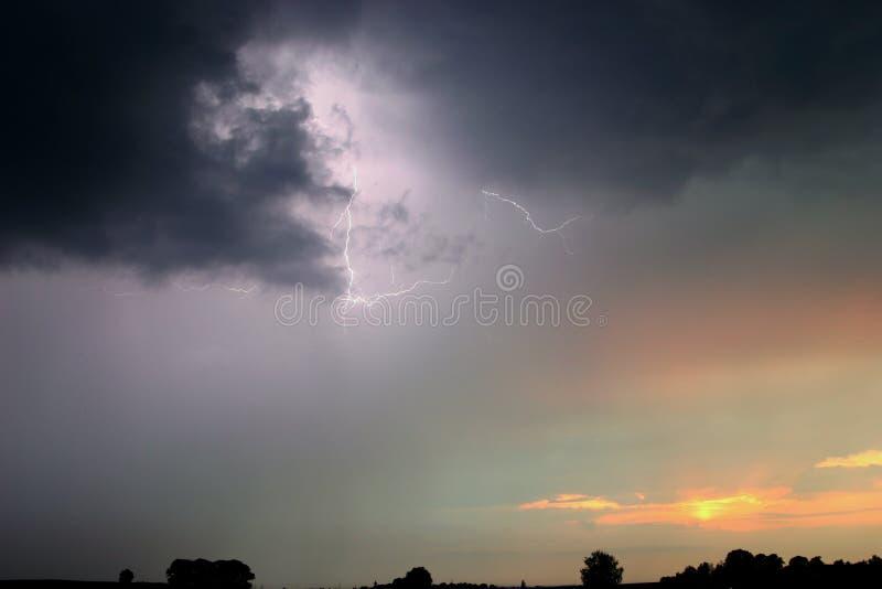 lights tree στοκ φωτογραφίες με δικαίωμα ελεύθερης χρήσης