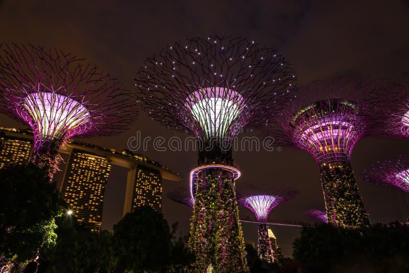 Lightshow de rhapsodie de jardin - jardins par la baie images stock