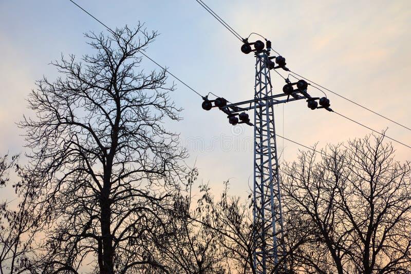 Ligne électrique avec les arbres sans feuilles image stock