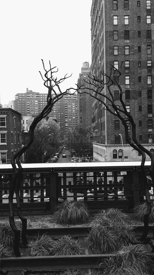 Ligne élevée New York City photos libres de droits