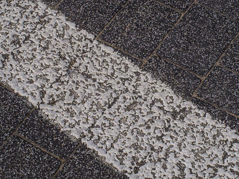 ligne blanche avec la peinture sur la route image libre de droits