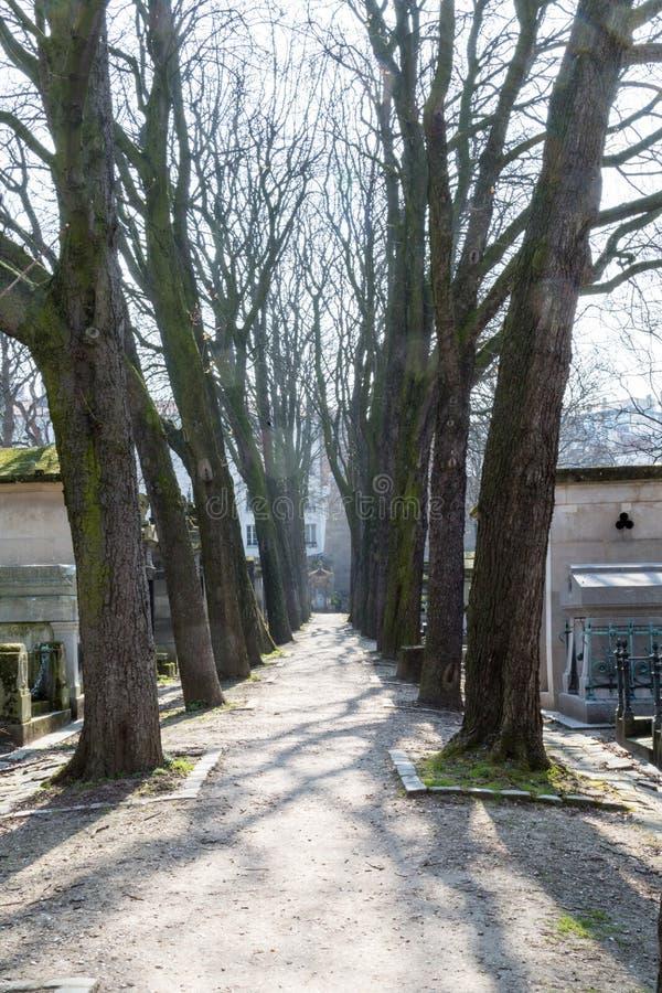 Ligne d'arbre dans le cimetière de Père Lachaise image stock
