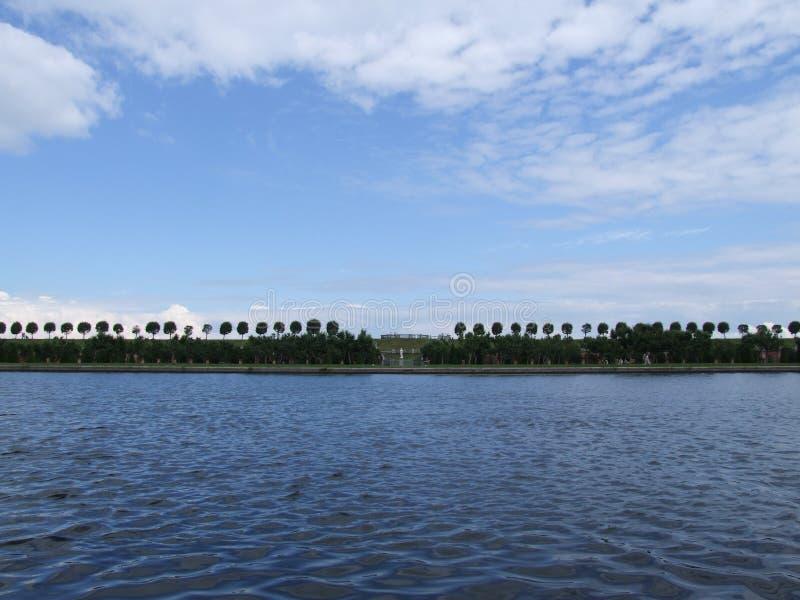 Ligne des arbres sur l'horizon image stock