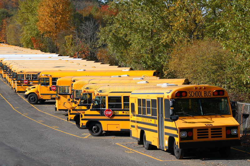 Ligne des autobus scolaires image stock