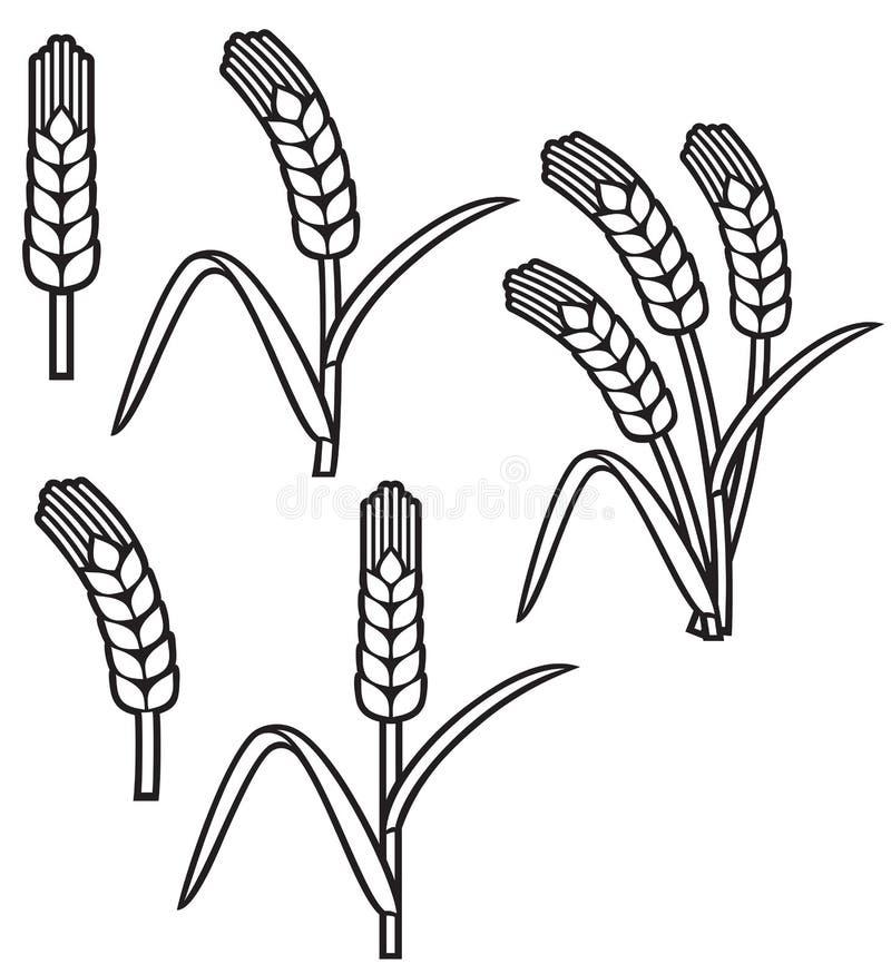 Ligne icônes de thine d'oreille de blé illustration de vecteur