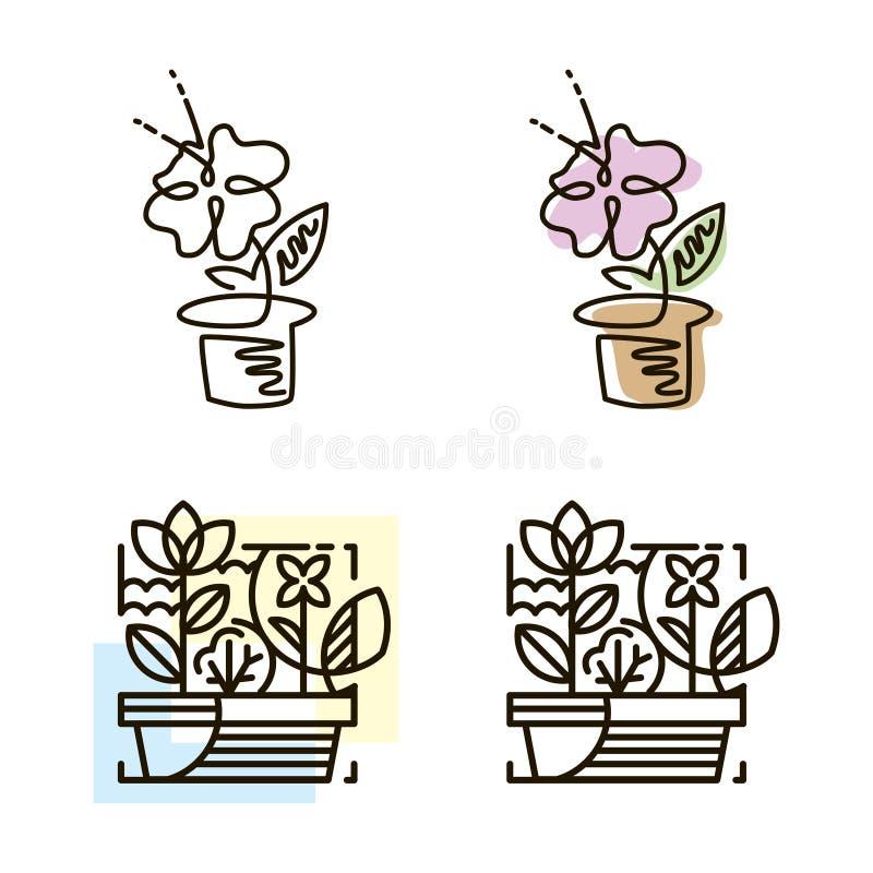Ligne icône de Web Fleur dans un bac Ligne Art Icon illustration stock