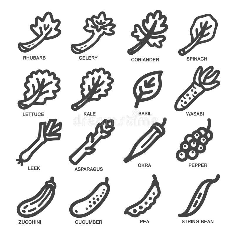 Ligne mince végétale icône illustration stock