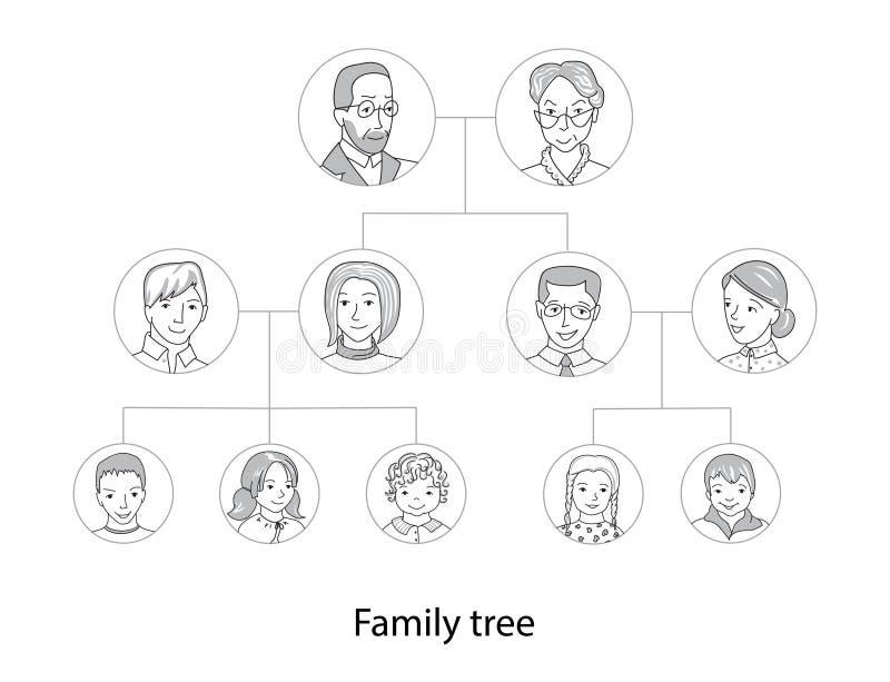 Ligne mince vecteur de diagramme d'arbre généalogique de style illustration libre de droits