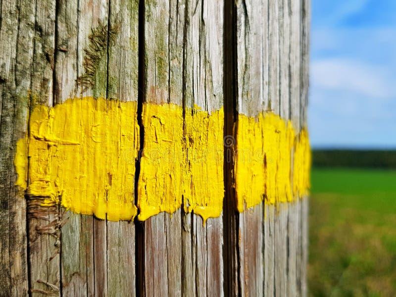 Ligne peinte par jaune photographie stock libre de droits