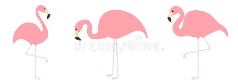Ligne rose d'ensemble d'icône de flamant Oiseau trois tropical exotique Collection d'animal de zoo Personnage de dessin anim? mig illustration de vecteur