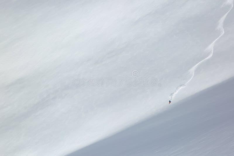 Ligne simple de ski sur la neige fraîche image stock