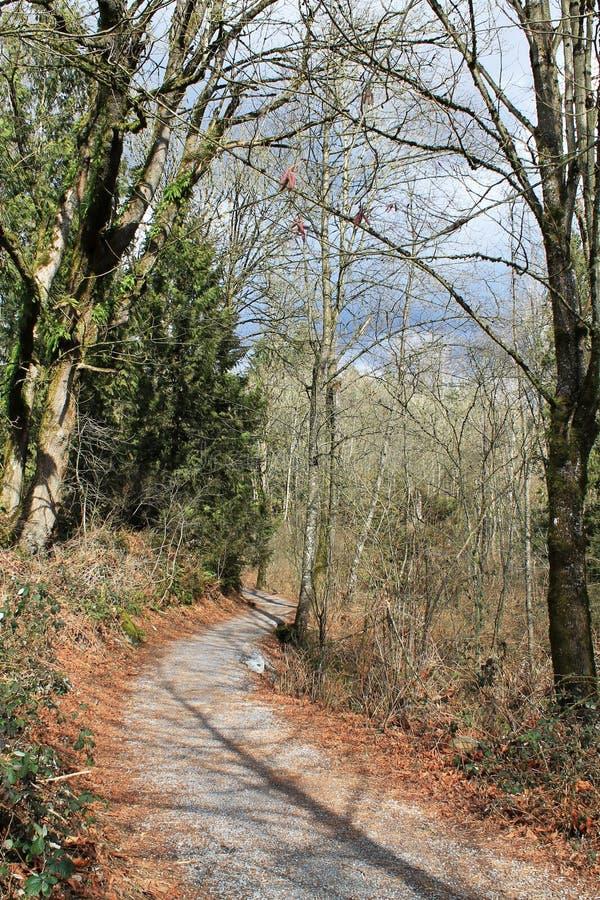 Ligne traînée d'Autumn Leaves de parc d'héritage photo stock