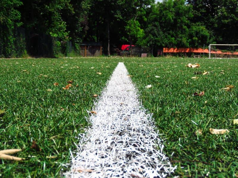 Lignes blanches sur le gazon de lancement du football photos libres de droits