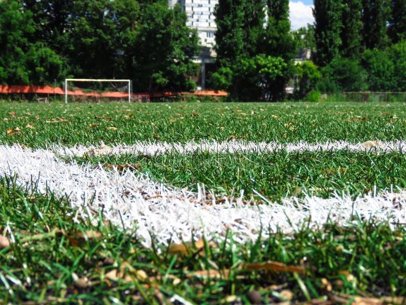 Lignes blanches sur le gazon de lancement du football photos stock