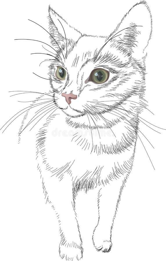 Lignes chat de noir de vecteur de croquis avec les yeux réalistes lumineux verts illustration stock
