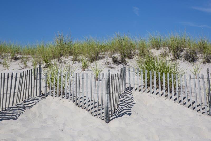 Lignes continues de barrière de plage, avec le roseau des sables et le ciel bleu images stock