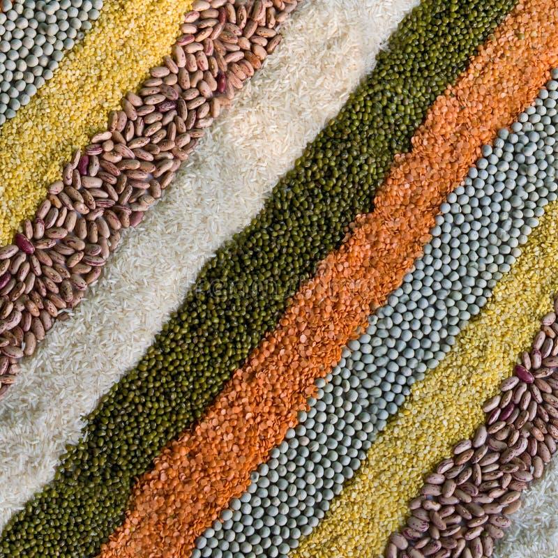 Lignes rayées colorées des haricots secs, légumineuses, becs d'ancre images stock