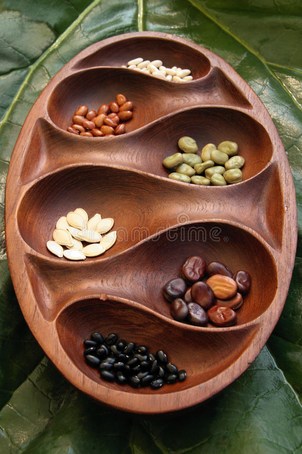 Lignting seeds royalty free stock images