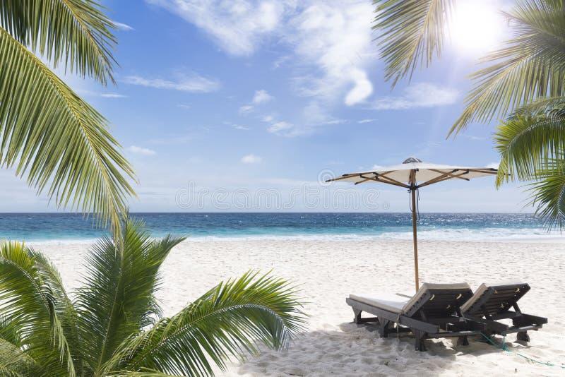 Ligstoel bij zonnige kust. Seychellen. royalty-vrije stock foto's