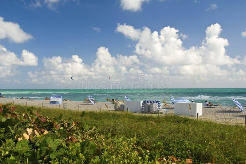 Ligstoelen en paraplu's op strand royalty-vrije stock foto's