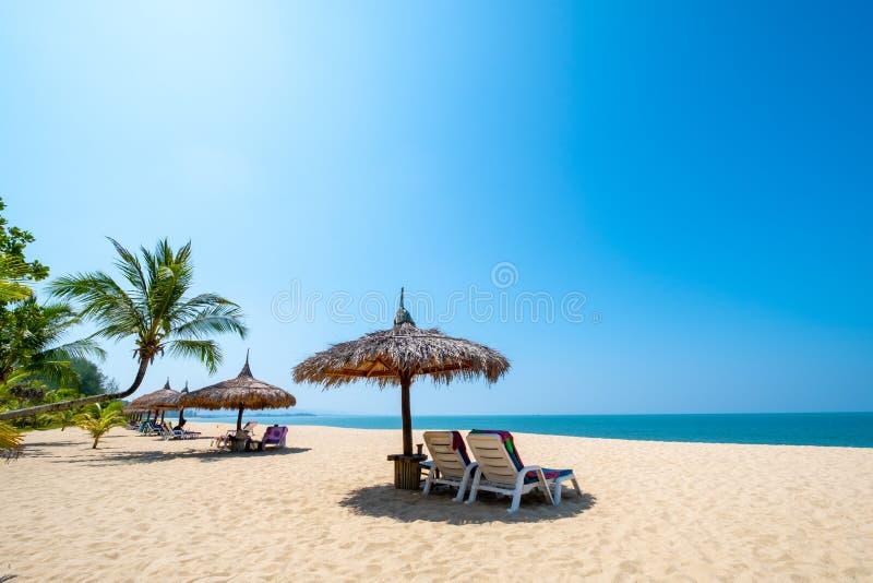 Ligstoelen, paraplu en palmen op zandig strand dichtbij overzees Eiland in phuket stock afbeelding