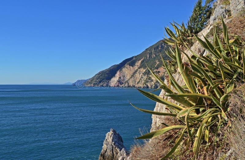 Ligurien, Italien, eine Ansicht einer felsigen Küste nahe Portovenere lizenzfreie stockfotos
