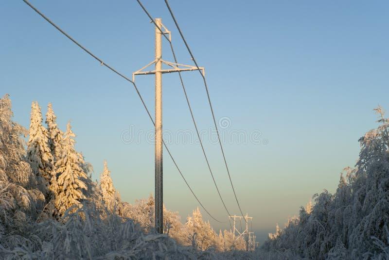 Lijn die de met hoog voltage van de machtstransmissie door een open plek in het de winterbos overgaan stock foto