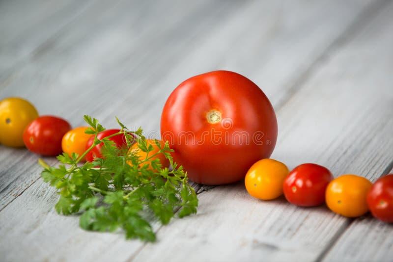 Lijn van natuurlijke organische rode en gele kersentomaten, tomaat en verse kruiden op houten achtergrond royalty-vrije stock afbeelding