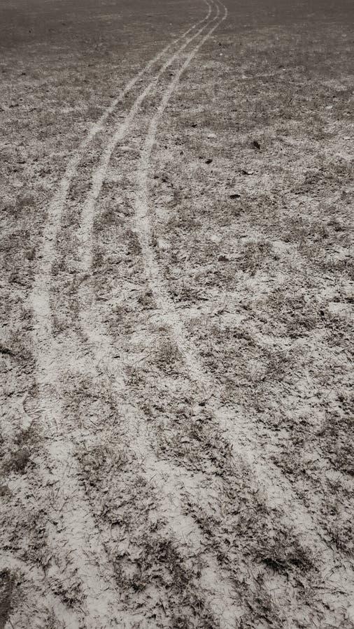 Lijnen in sneeuw op gras stock afbeeldingen