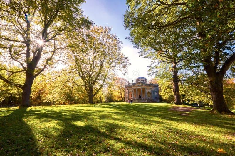 Lijnen van bomen in het Engelse platteland op een zonnige dag royalty-vrije stock foto