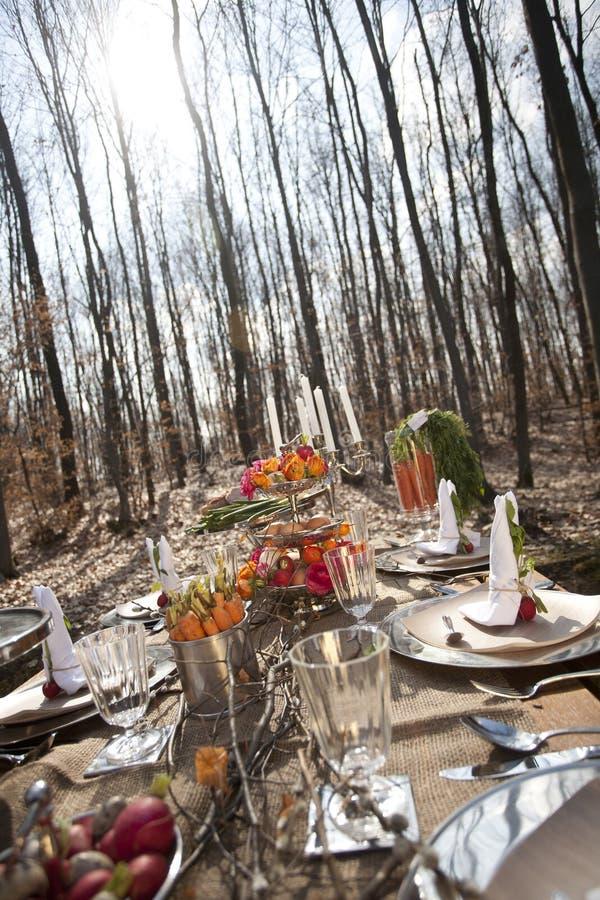 Lijst met voedsel in bos royalty-vrije stock fotografie