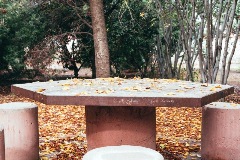 Lijst van steen in het park stock foto's