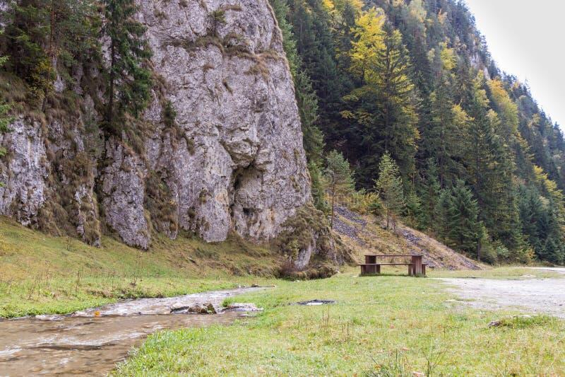 Lijst voor een picknick dichtbij een ondiepe stroom die in de laaglanden bij de voet Karpatische Bergen stromen stock afbeeldingen
