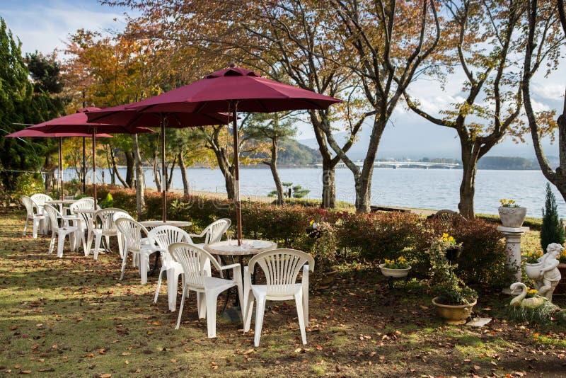 Lijsten met stoelen onder rode paraplu op gebied van grassen, berg Fuji op de achtergrond stock afbeelding