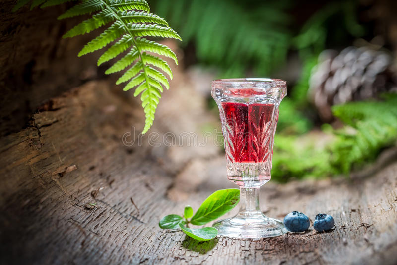 Likör med alkohol och blåbär i sommar arkivfoton