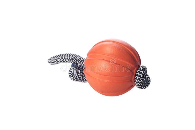Liker : boule sur la corde - jouez pour la formation et l'amusement de chien, d'isolement sur un fond blanc, accessoire d'animal  photographie stock libre de droits