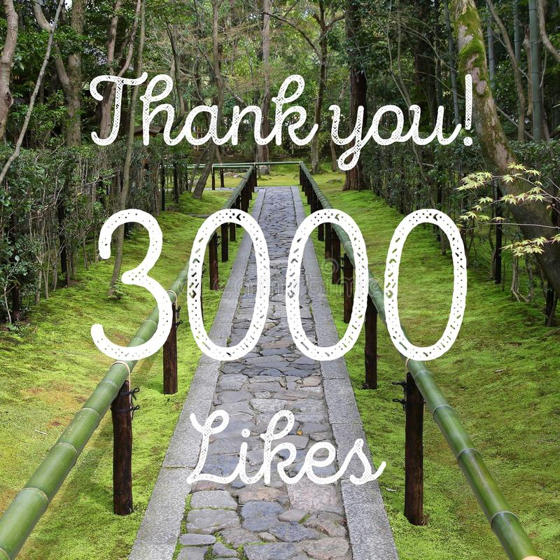 3000 likes. Social media achievement. Company online community thank you note. 3k likes stock photo