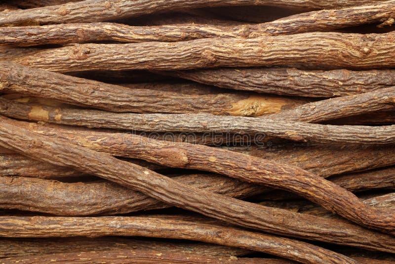 Likworu korzeń składa tło zdjęcia stock