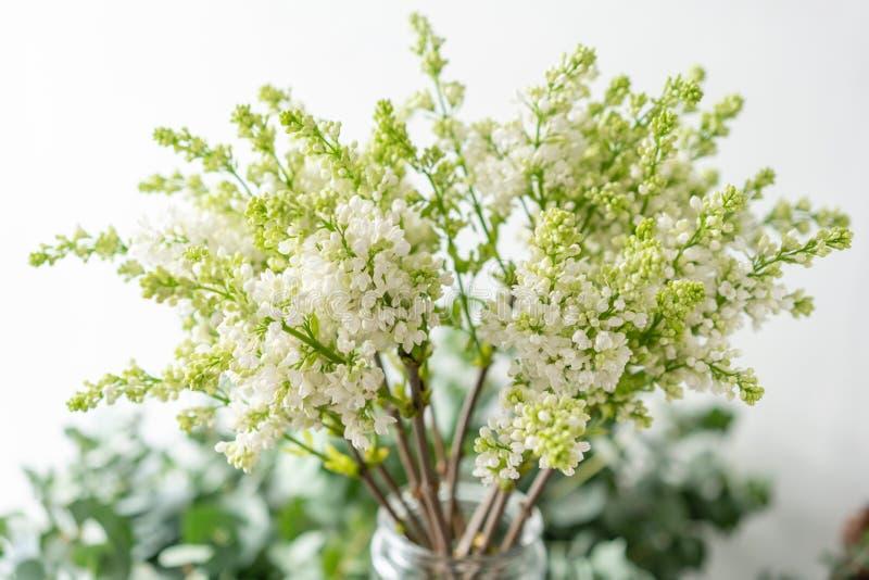 Lilás branco do grupo no vaso de vidro Flores do ramalhete no fundo claro wallpaper Árvores de florescência da mola imagens de stock royalty free