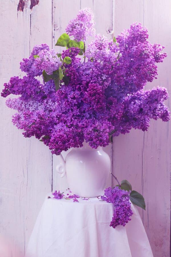 Lilás no vaso cerâmico branco imagem de stock royalty free