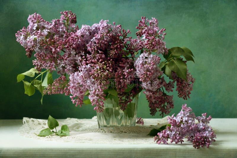 lila arkivfoton