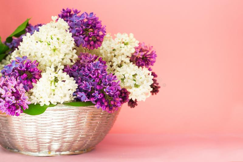 Lila blommor samlar ihop i en korg p? rosa backgrond f?r suddig korall Beautful doftande lila blommabukett med kopieringsutrymme fotografering för bildbyråer