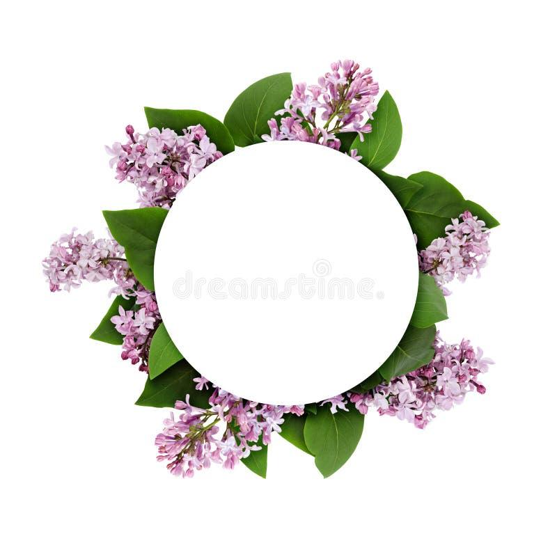 Lila Blumen auf rundem Rahmen stockbilder