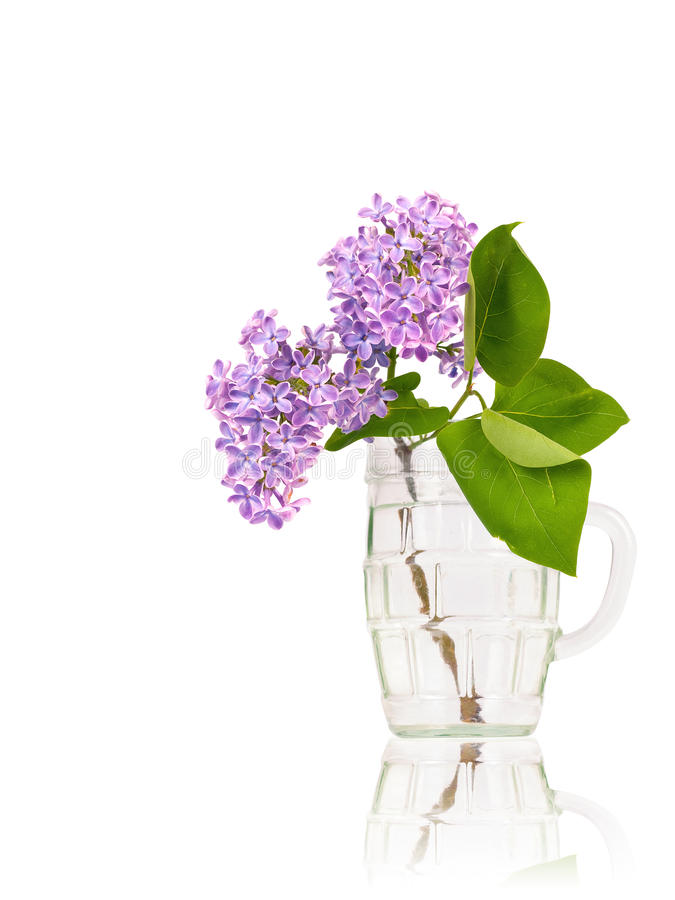 Lila Blumen im Glas stockfotos