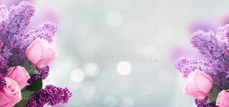 Lila Blumen mit Rosen lizenzfreie stockfotografie