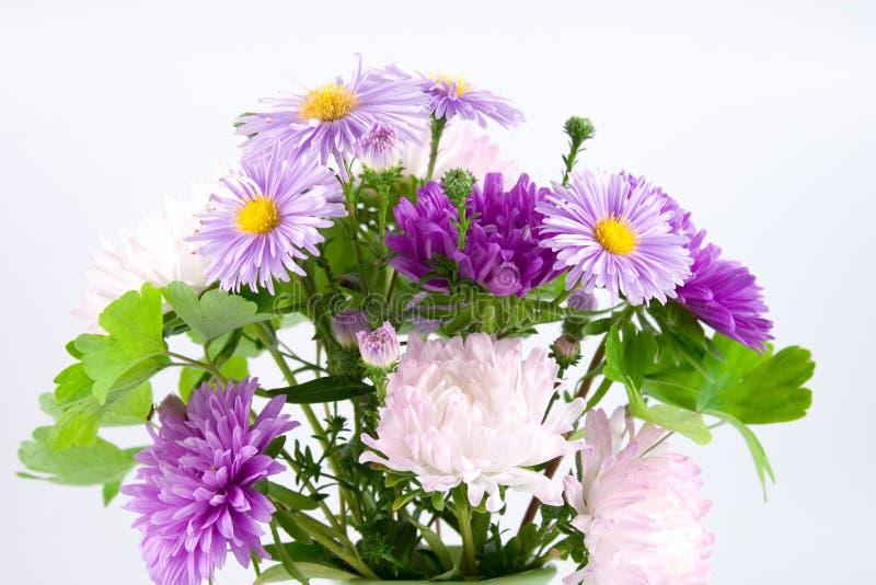Lila Blumenstrauß lizenzfreie stockfotos