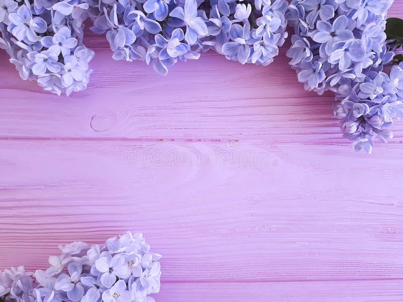 Lila hermosa en el arreglo púrpura de madera rosado del diseño de la frontera fotos de archivo