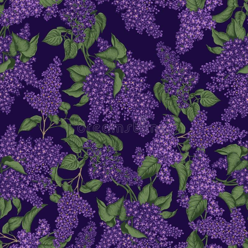Lila Modelo incons?til del vector en estilo del vintage Apenas llovido encendido Arbustos florecientes Plantas en parques y jardi stock de ilustración