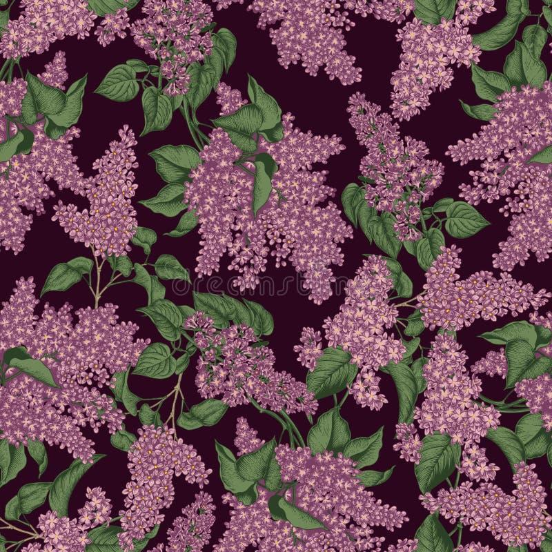 Lila Modelo incons?til del vector en estilo del vintage Apenas llovido encendido Arbustos florecientes Plantas en parques y jardi ilustración del vector